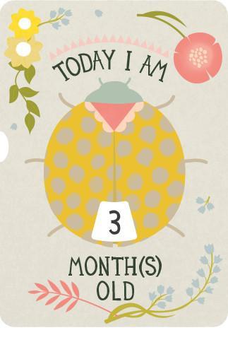 Milestone Tarjeta Giratoria 1-12 meses